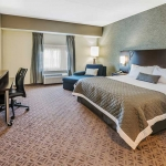 Wyndham Garden Williamsville king room
