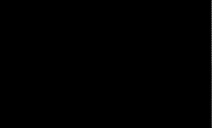 500 Pearl Logo