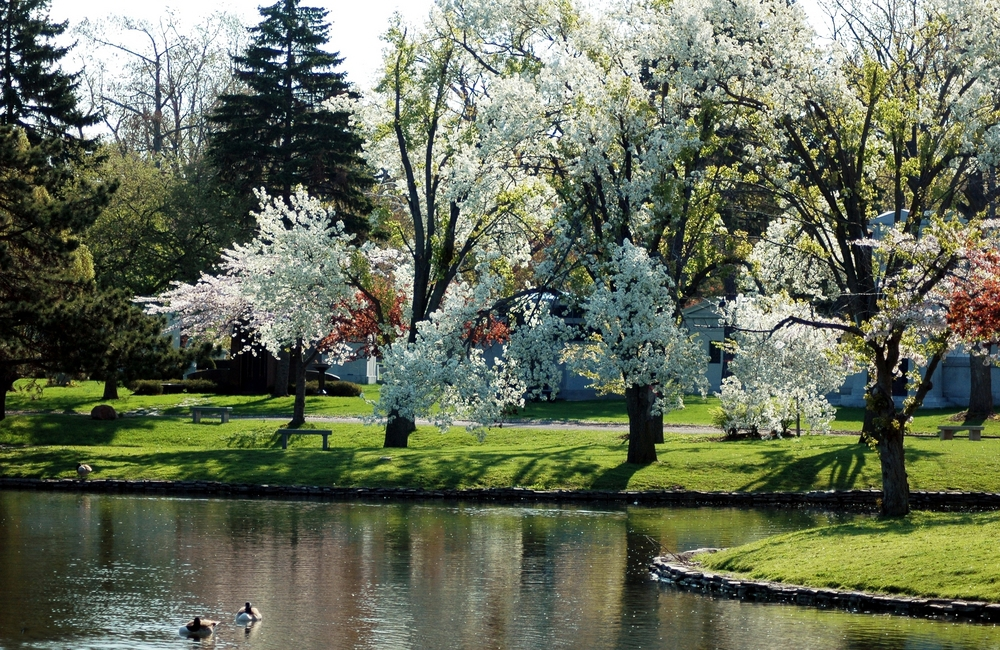 A beautiful park in Buffalo New York on a sunny day as Ellicott Development lists the top outdoor adventures in Buffalo